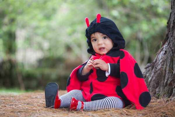 a baby dressed in a halloween ladybird costume